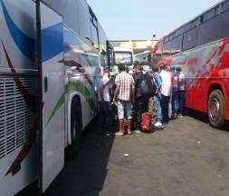 Les professionnels du transport refusent la reprise d'activité