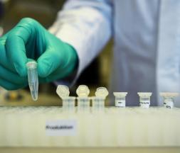 les essais cliniques ont démarré ce lundi au Maroc