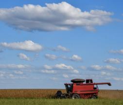 agriculture brésil