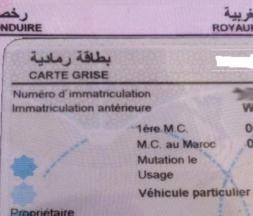 les permis de conduire et les cartes grises