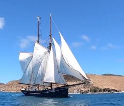 Au Costa Rica, on construit un cargo à trois mâts qui naviguera à la force du vent