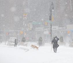 Quelque 13 cm de neige recouvraient déjà Central Park en début de matinée, ce lundi 1er février © MAXPPP
