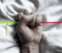 L'euthanasie (image d'illustration) © Maxppp