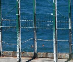 Des migrants nageant au large de l'enclave espagnole de Sebta, le 17 mai 2021 © AFP