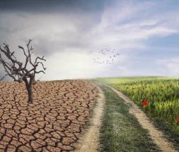 Les dérèglements climatiques inquiètent les experts dans le domaine © DR