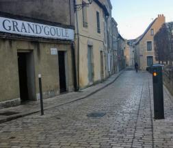 La Grand'Goule à Poitiers © DR