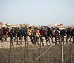 Migration clandestine : 700 migrants ont tenté de franchir la haute de Mililia