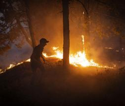 Chefchaouen : l'incendie maitrisé à 80%