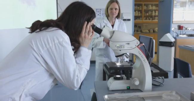 Journée de la femme scientifique
