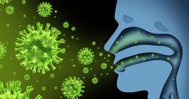 Coronavirus : les symptômes et mesures préventives