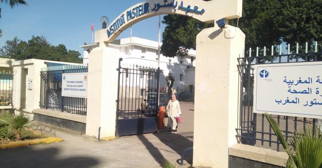l'Institut Pasteur de Casablanca