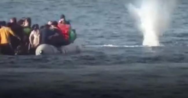 migrants attaqués en mer par des garde-côtes grecs