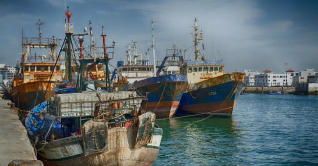 Pêche maroc