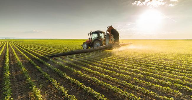 La campagne agricole 2020-2021 a commencé mi-octobre dernier © DR