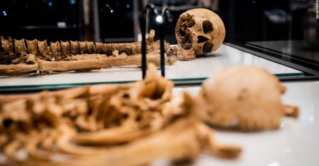 Une analyse ADN conduit à la découverte de 2 membres d'une famille Viking