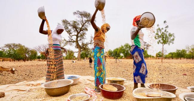 Des femmes triant les céréales au Burkina Faso