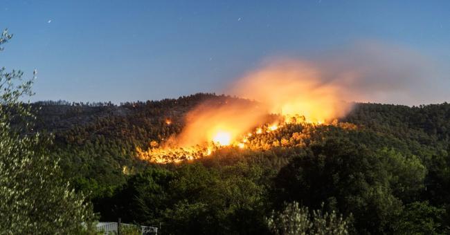 Canicule : plus de 1.200Ha de forêt ravagés par les feux