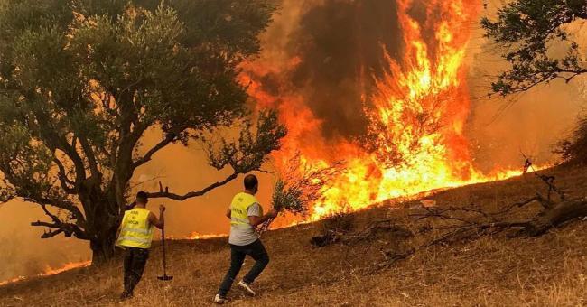 Incendie en Algérie : le président ignore la main tendue du Maroc